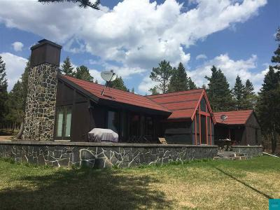 Two Harbors Single Family Home For Sale: 2403 Gate 10 Rd