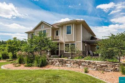 Duluth Single Family Home For Sale: 2738 Northridge Dr