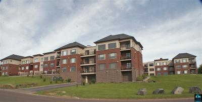 Duluth Condo/Townhouse For Sale: 1126 Mesaba Ave #312