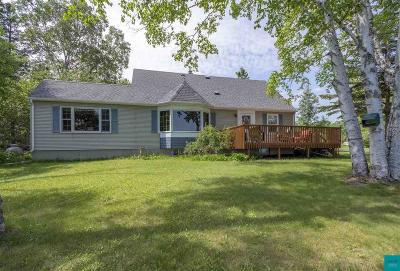 Duluth Single Family Home For Sale: 8925 Congdon Blvd