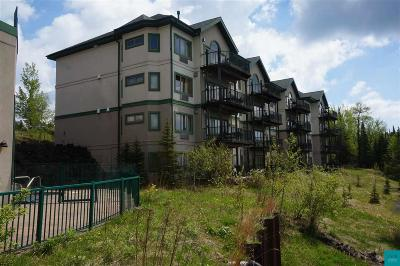 Two Harbors Condo/Townhouse For Sale: 1412 #f41 Burlington Rd #F-41