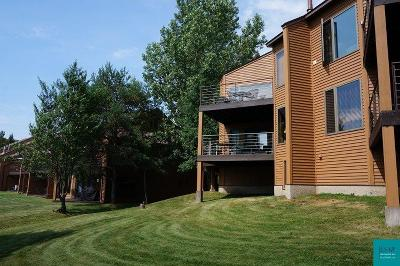 Two Harbors Condo/Townhouse For Sale: 1624 #85 Superior Shores #85