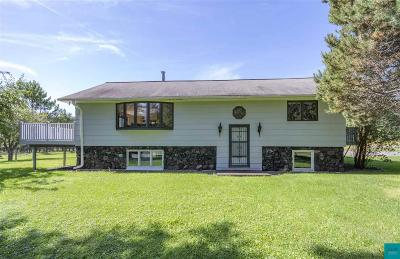 Duluth Single Family Home For Sale: 5851 McQuade Rd