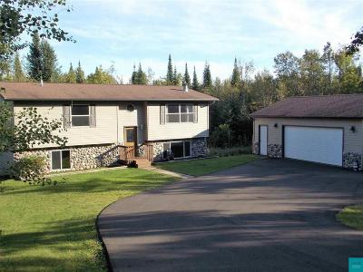 Duluth Single Family Home For Sale: 4458 W Beyer Rd
