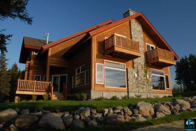 Two Harbors Condo/Townhouse For Sale: 2826 Hwy 61 E #395