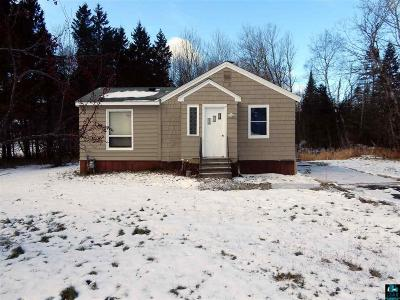 Hermantown Single Family Home For Sale: 3985 Haines Rd
