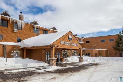 Condo/Townhouse For Sale: 1521 Superior Shores #3120