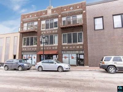 Duluth Condo/Townhouse For Sale: 414 W 1st St #3A