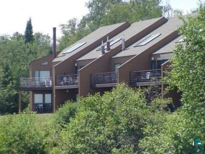 Two Harbors Condo/Townhouse For Sale: 1610 Superior Shores #95