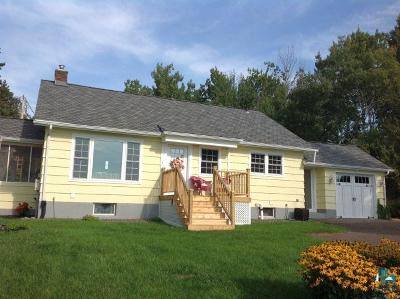 Duluth Single Family Home For Sale: 8245 Congdon Blvd