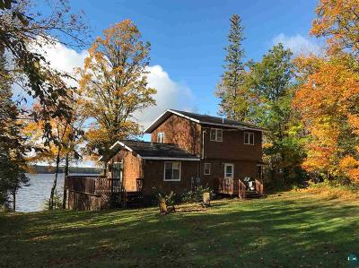 Single Family Home For Sale: 3891 Woodland Park Dr