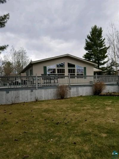 Duluth Single Family Home For Sale: 4778 Breezy Point Rd