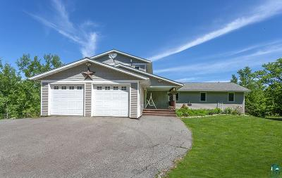 Duluth Single Family Home For Sale: 3015 W Lookout Rd