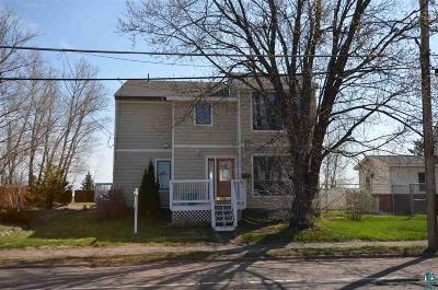 Duluth Single Family Home For Sale: 1004 S Lake Ave