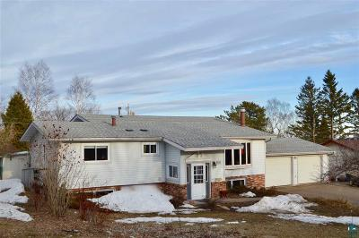 Duluth Single Family Home For Sale: 1420 Cliff Ave