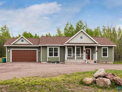 Duluth Single Family Home For Sale: 1657 Wildwood Rd