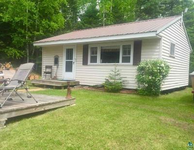 Duluth Single Family Home For Sale: 7857 E Briar Lake Dr
