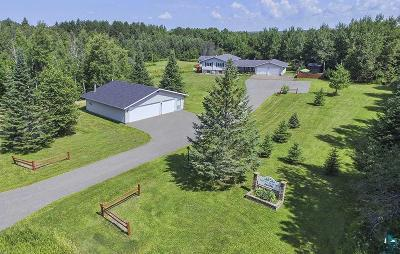 Duluth Single Family Home For Sale: 2600 Swan Lake Rd