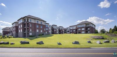 Duluth Condo/Townhouse For Sale: 1126 Mesaba Ave #117