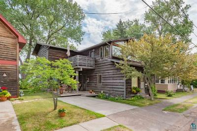 Duluth Single Family Home For Sale: 1204 S Lake Ave