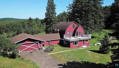 Duluth Single Family Home For Sale: 118 Howard Gnesen Rd