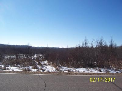 Residential Lots & Land Sold: 38857 County 89