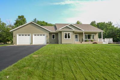 Douglas County Single Family Home For Sale: 713 Thomas Drive NE