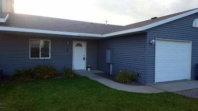 Douglas County Condo/Townhouse For Sale: 102 6th Street W #2