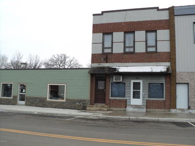 Douglas County Commercial For Sale: 22 Main Street E
