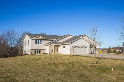 Douglas County Single Family Home For Sale: 820 Latoka View Court SW