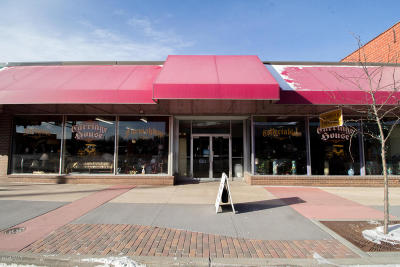 Douglas County Commercial For Sale: 422 Broadway Street