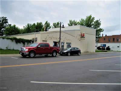 Douglas County Commercial For Sale: 40 Main Street E