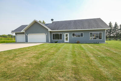 Douglas County Single Family Home For Sale: 2676 Lois Lane SE