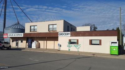 Douglas County Commercial For Sale: 103 Main Avenue