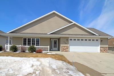 Douglas County Condo/Townhouse For Sale: 204 Ashley Lane