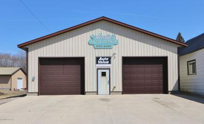 Douglas County Commercial For Sale: 209 E Front Street