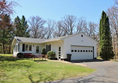 Douglas County Single Family Home For Sale: 2009 N McKay Avenue NE