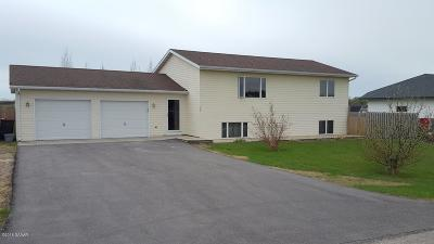 Douglas County Single Family Home For Sale: 102 7th Street W