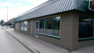Douglas County Commercial For Sale: 308 3rd Avenue E #1 &