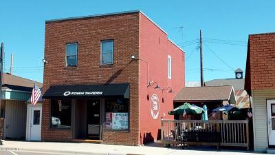Douglas County Commercial For Sale: 17 Main Street E