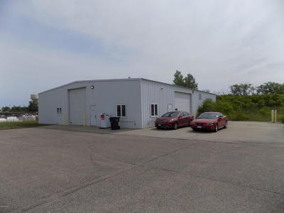 Douglas County Commercial For Sale: 4129 Minnesota Street
