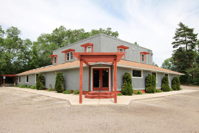 Douglas County Commercial For Sale: 3904 County Rd 42 NE