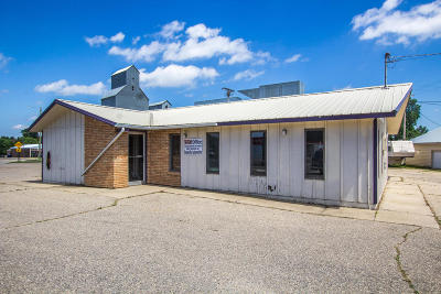 Douglas County Commercial For Sale: 109 Railroad Street