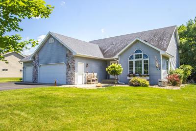 Douglas County Single Family Home For Sale: 4738 W Latoka Lane SW