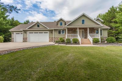 Douglas County Single Family Home For Sale: 3553 Pawnee Drive SE