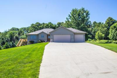 Alexandria Single Family Home For Sale: 3740 Latoka View Lane SW