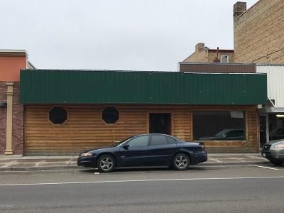 Sauk Centre MN Commercial For Sale: $119,000