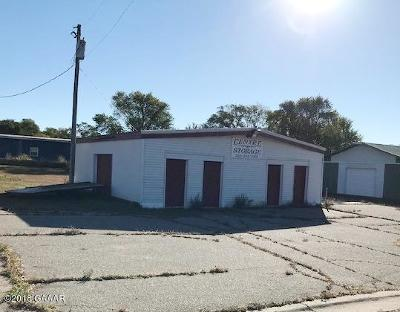 Sauk Centre MN Commercial For Sale: $39,900