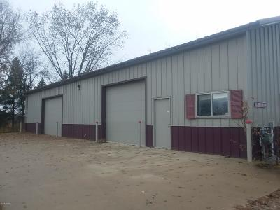 Douglas County Commercial For Sale: 965 Garden Drive SW