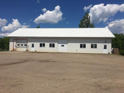 Douglas County Commercial For Sale: 5355 County Hwy 82 #1